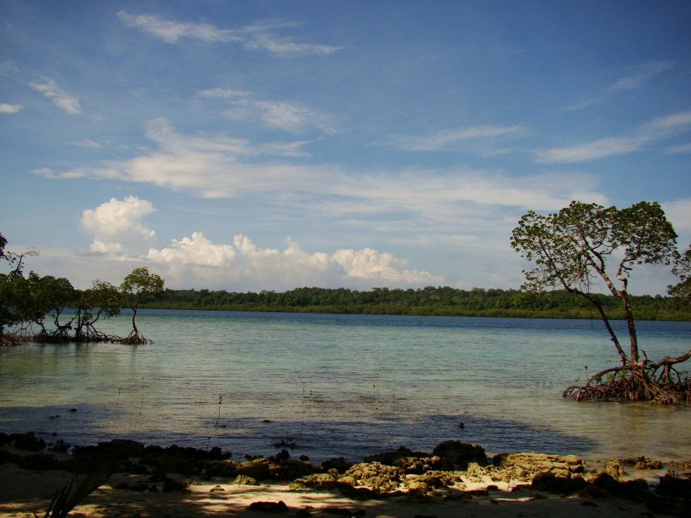 Incessantly Blue and Gorgeous Andaman Islands (6/6)