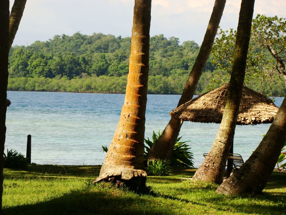 Incessantly Blue and Gorgeous Andaman Islands (5/6)